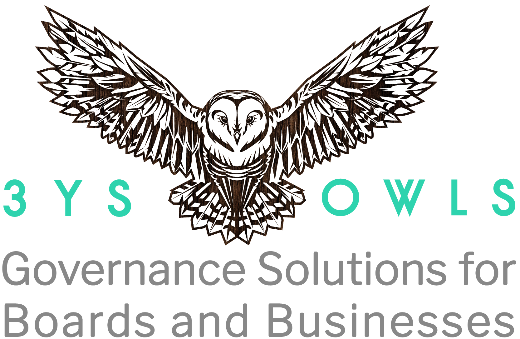3YS Owls Corporate Govenance